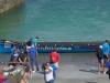 Regata clasificatoria de La Concha, edición número 123, celebrada en la Bahía de San Sebastián el jueves 30 de agosto de 2018. Foto Chicho y Toñi.